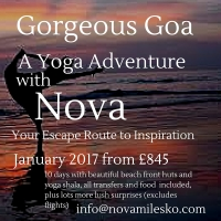 Goa Yoga and Aerial Adventure