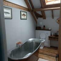 Lush Eco-Farmstay in the New Forest